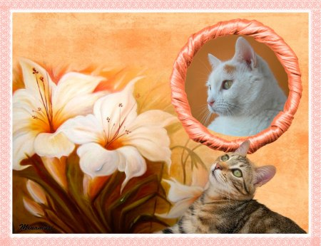 bka-duri-flores-blancas-marco