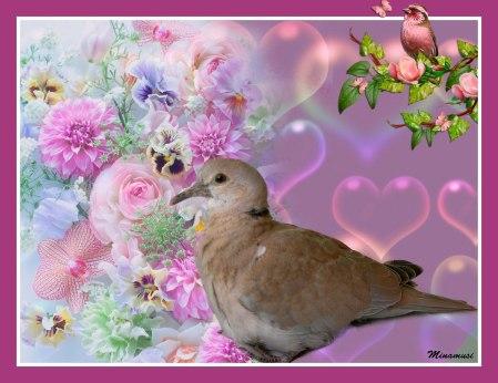 paloma-flores-dila