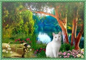 bka-river-y-flores-sombra-b